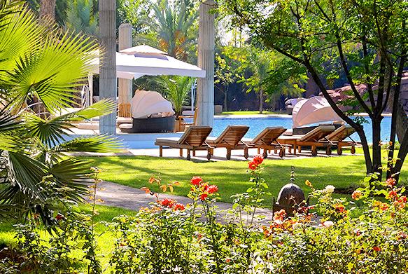 Vue sur la piscine depuis les jardins