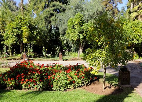 Vue du Parc EsSaadi Marrakech