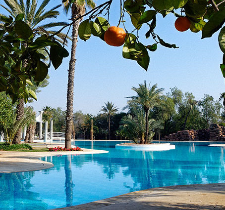 piscine-orange-palmier-marrakech