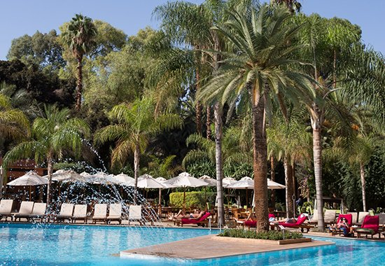 piscine-palmier-hotel-marrakech